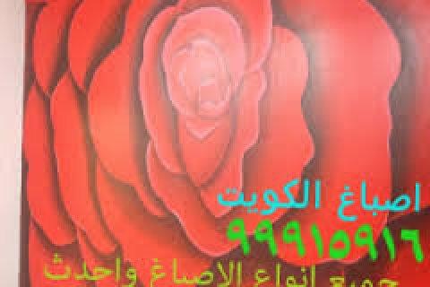 صباغ صباغين 99915916 صباغ شاطر واسعار رخيص