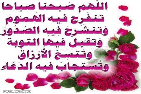 رقم صباغ شاطربالكويت 66604950 ابو علياء اصباغ وتركيب قواطع جبس