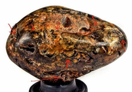 جوهرة بحجم وشكل حبة الكمثرة – اصل عضوى قديمة جدا