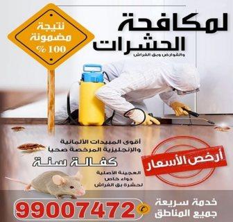 مكافحة حشرات 99007472