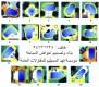 شركات احواض السباحة في الكويت هاتف 24731328