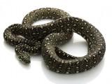 Diamond Python for sale