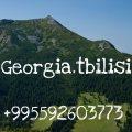 اذا كنت تبحث عن استثمار حقيقى امتلك شقتك الفندقية بجورجيا بمقدم 25000 درهم