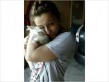 American Curl Male white Kitten