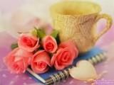 انا احب الحياة والاطفال والحياة اقدس الحياةالزوجية كريمة لطيفة
